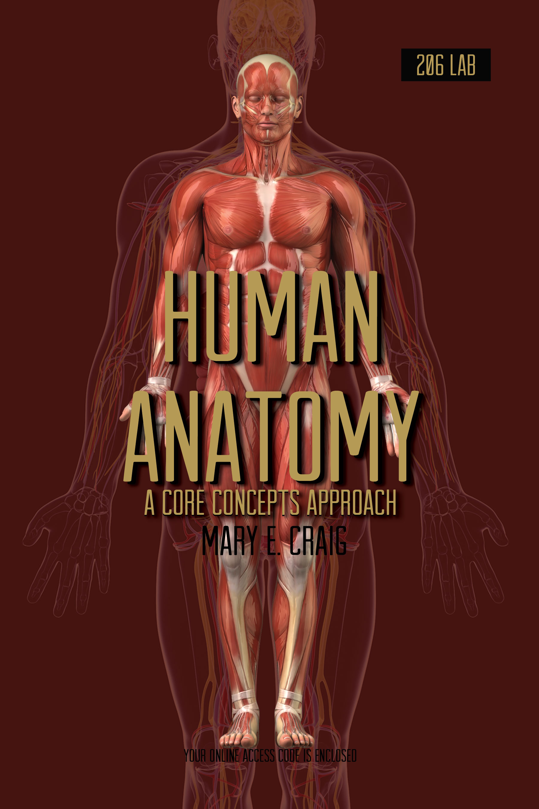 Product Details Human Anatomy A Core Concepts Approach Lab 206